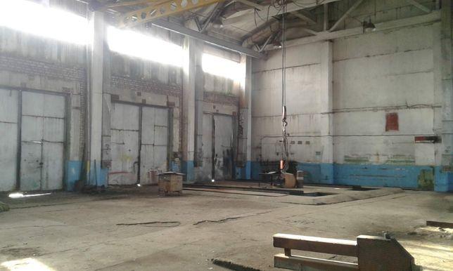 Производственное помещение - 13