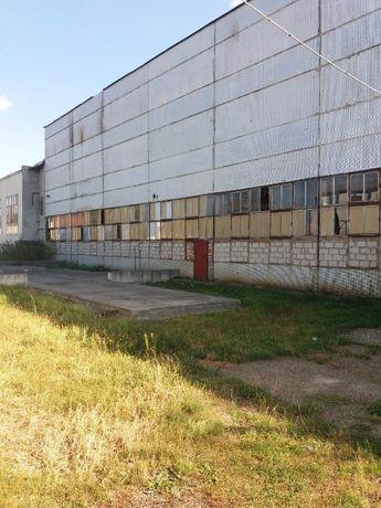Warehouse - 8