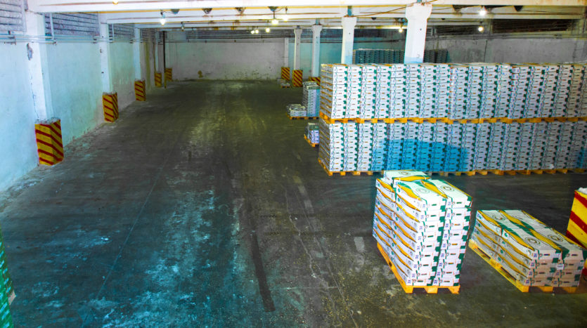Rental of freezer warehouse LLC «VINPROMHOLOD» - 10