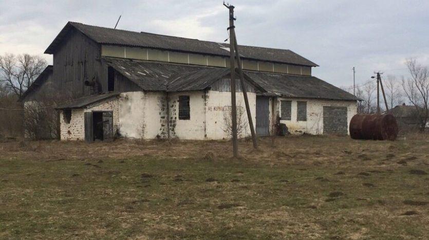 Оренда - Виробниче приміщення, 500 кв.м., м Підгір'я