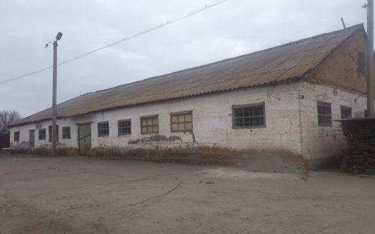 Satılık – Dondurucu depo, 190 m2, Adjamka