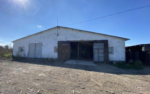 Sale – Industrial premises, 1600 sq.m., Grabovets