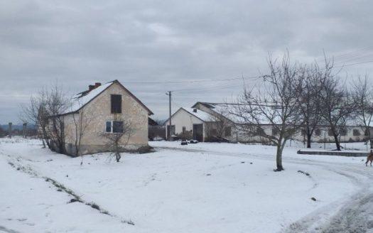 Sale – Dry warehouse, 3000 sq.m., Vinogradov