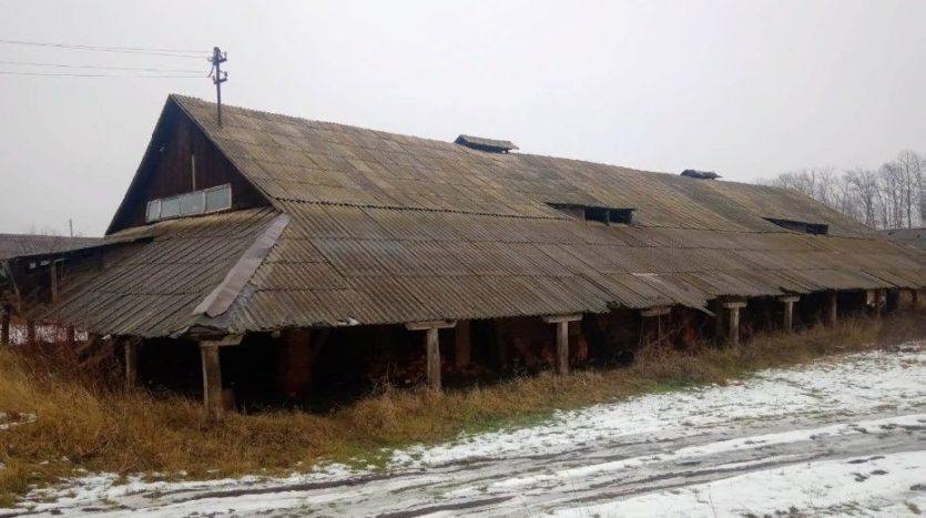 Продажа - Сухой склад, 1000 кв.м., г. Чертков - 4