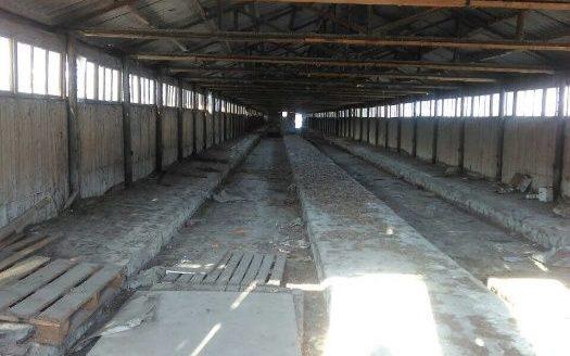Оренда – Виробниче приміщення, 1400 кв.м., м Зазим'я