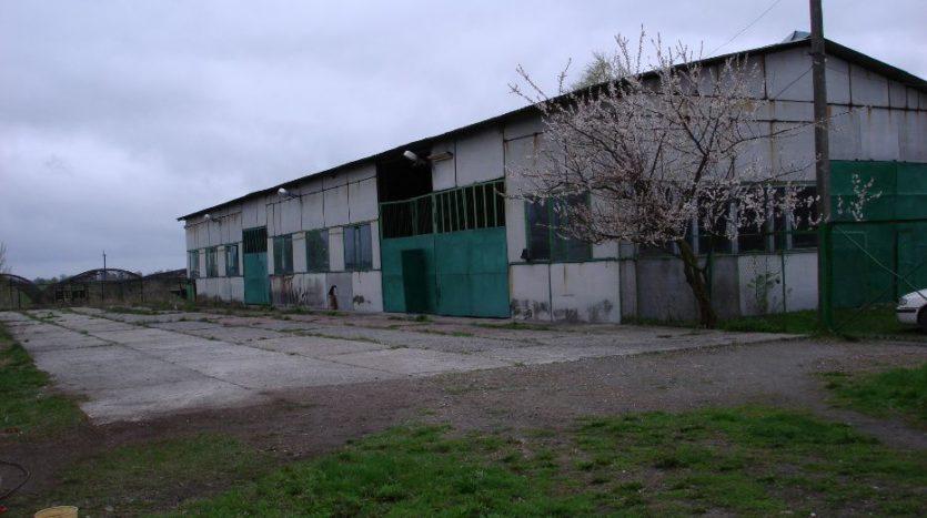 Продаж - Виробниче приміщення, 1700 кв.м., м Глібівка