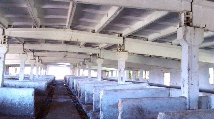 Продажа - Сухой склад, 12000 кв.м., г. Выгода - 5