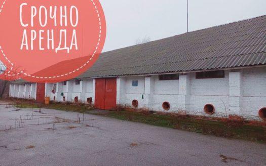 Rent – Dry warehouse, 10000 sq.m., Nizhyn