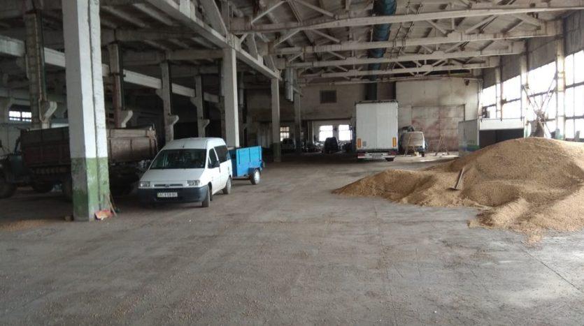 Rent - Warm warehouse, 4200 sq.m., Vladimir-Volynsky - 6
