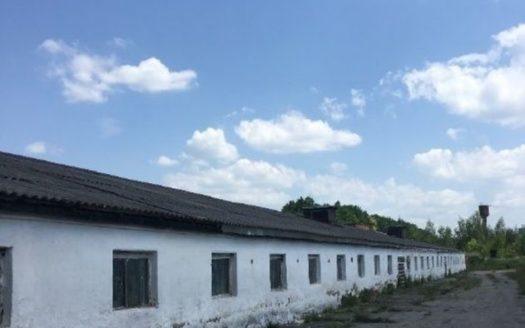 Rent – Warm warehouse, 1000 sq.m., Zeliv