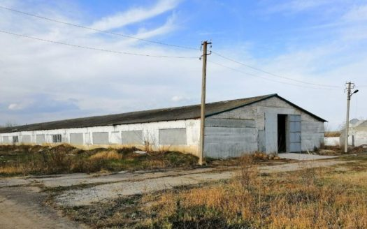 Sale – Dry warehouse, 7200 sq.m., Mirnoe