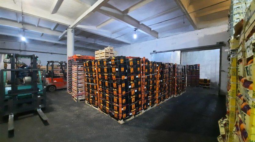 Rent - Refrigerated warehouse, 510 sq.m., Odessa - 3