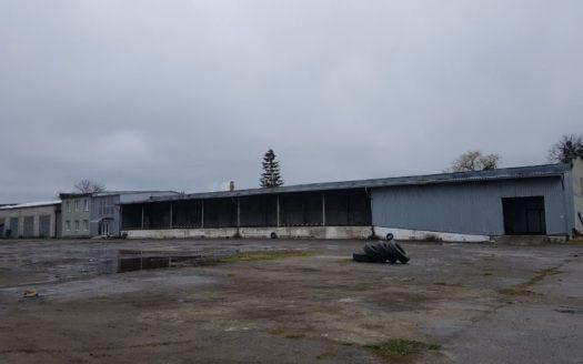 Оренда – Сухий склад, 1216 кв.м., м Стрий
