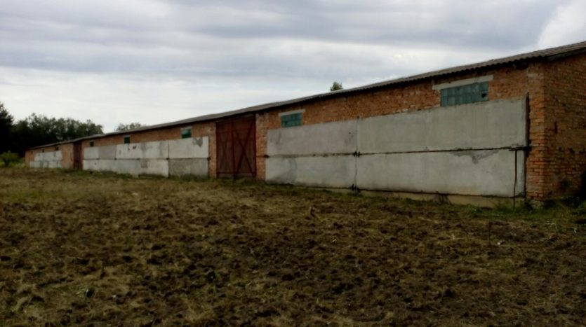 Rent production and storage space 2000 sq.m. Holovnyczia - 4