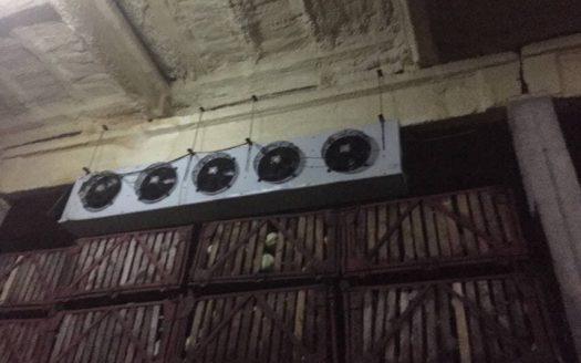 Sale – Refrigerated warehouse, 1200 sq.m., Zarya