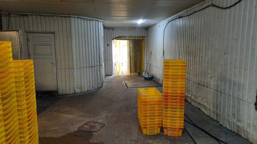 Оренда - Холодильний склад, 600 кв.м., м Київ - 19