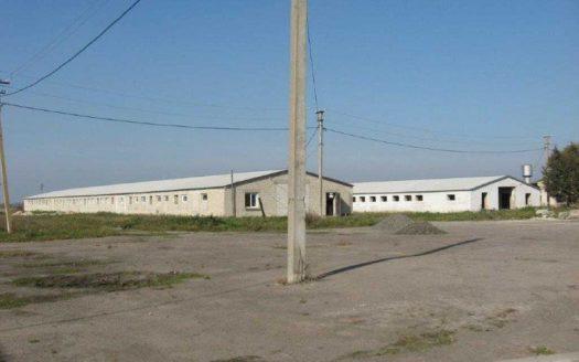 Продаж – Сухий склад, 13064 кв.м., м Горохів