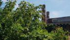 Satılık - Kuru depo, 1000 m2, Yarmolintsy - 3