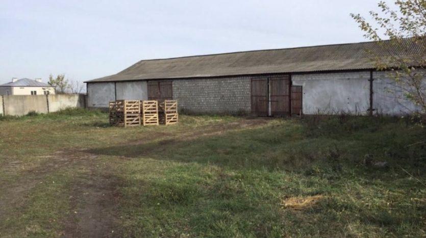 Аренда - Сухой склад, 730 кв.м., г. Куликов - 6