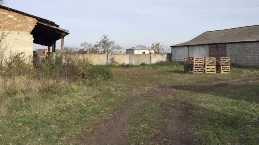 Аренда - Сухой склад, 730 кв.м., г. Куликов - 7