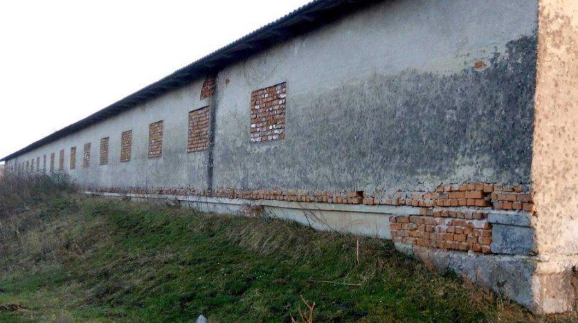 Kiralık - Kuru depo, 1500 m2, Ternopil - 3
