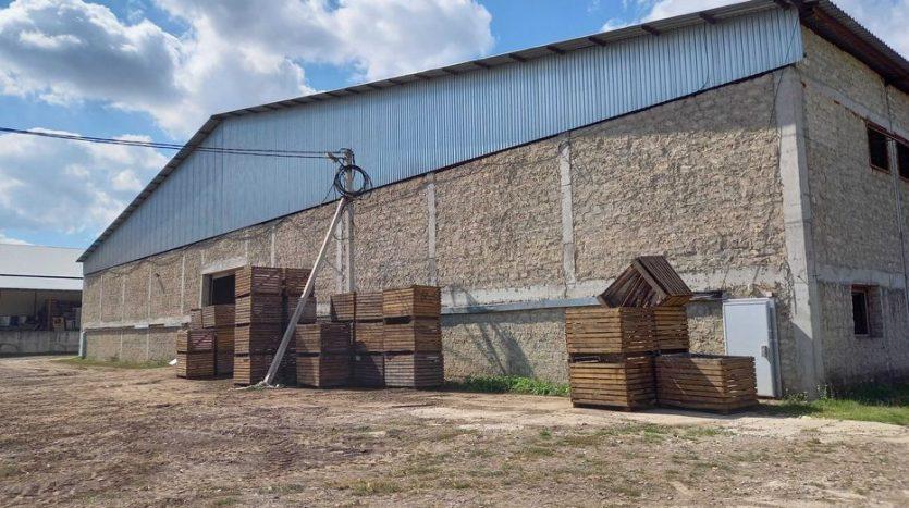 Sale - Dry warehouse, 45,020 sq.m., Vasilkovtsy