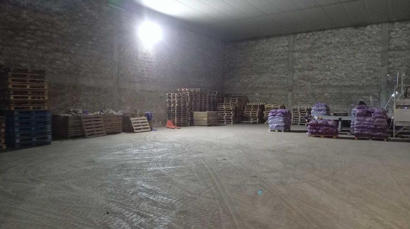Sale - Dry warehouse, 45,020 sq.m., Vasilkovtsy - 2