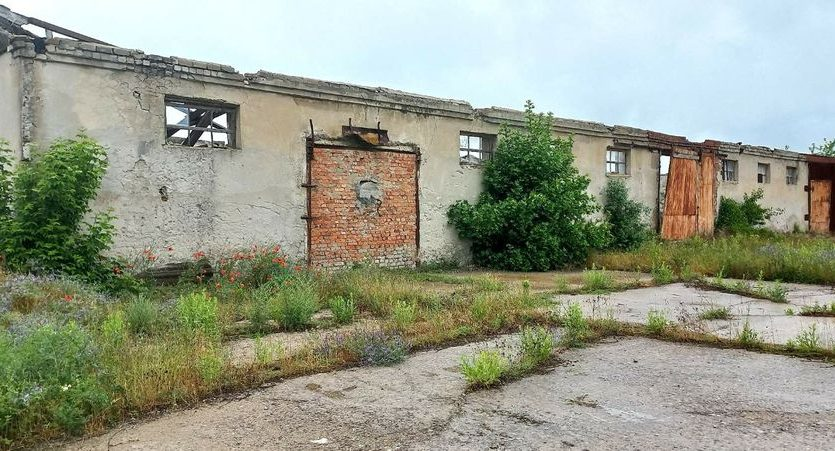 Satılık - Kuru depo, 2400 m2, Brilovka - 11