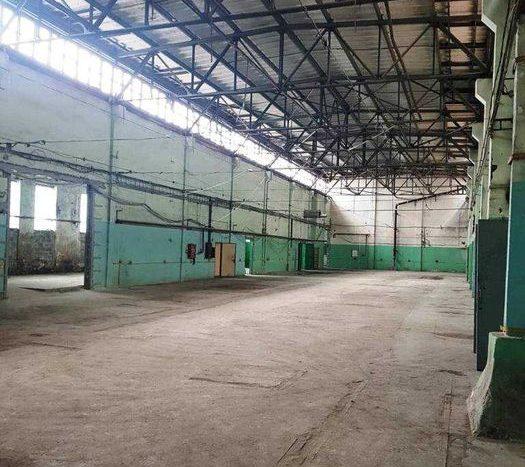 Rent - Dry warehouse, 1747 sq.m., Kiev - 9