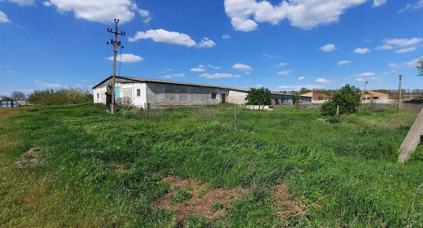 Rent - Warm warehouse, 1500 sq.m., Kushugum - 11