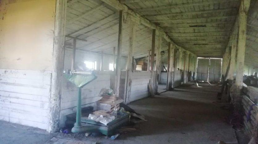 Продаж - Сухий склад, 700 кв.м., м Нижні Станівці - 5