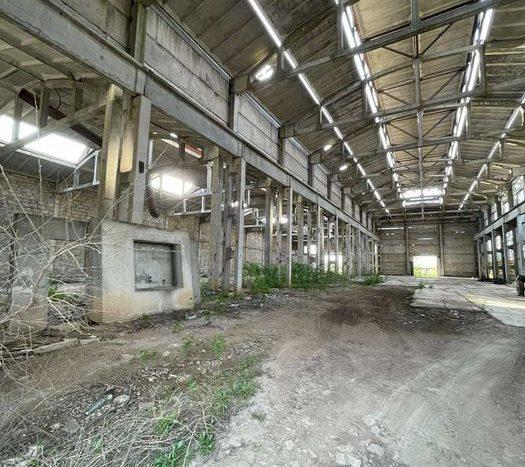 Sale - Dry warehouse, 2335 sq.m., Nikolaev - 4