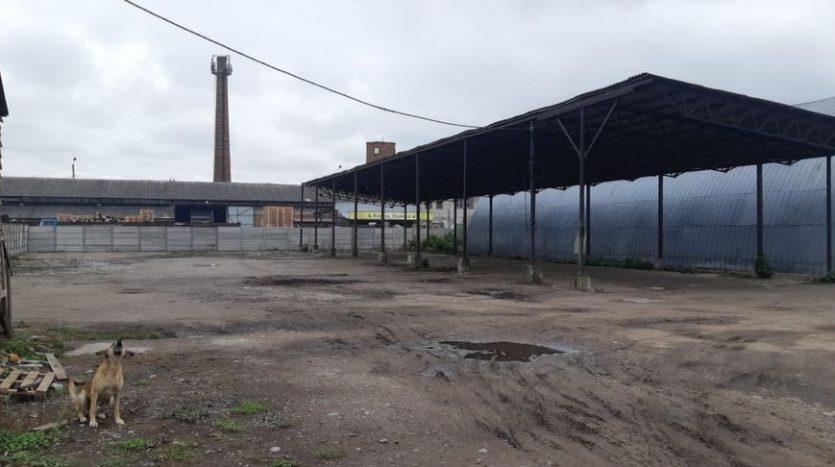 Rent - Dry warehouse, 949 sq.m., Zhytomyr - 2