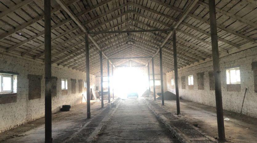 Kiralık - Kuru depo, 800 m2, Rivne - 6