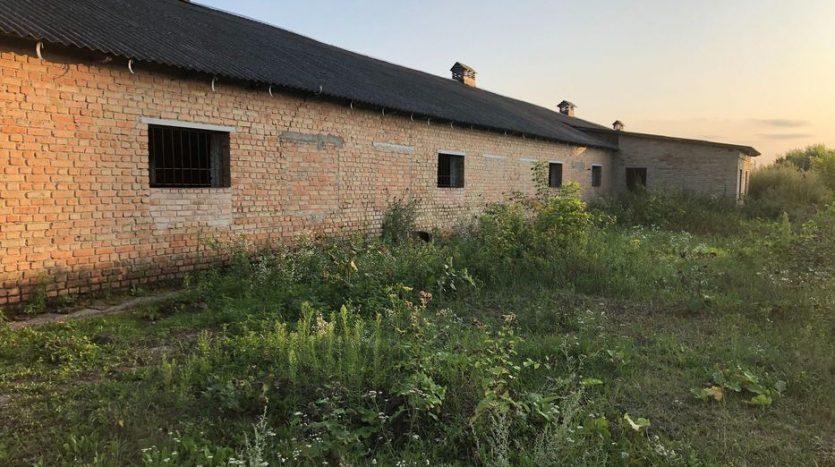 Kiralık - Kuru depo, 800 m2, Rivne - 8