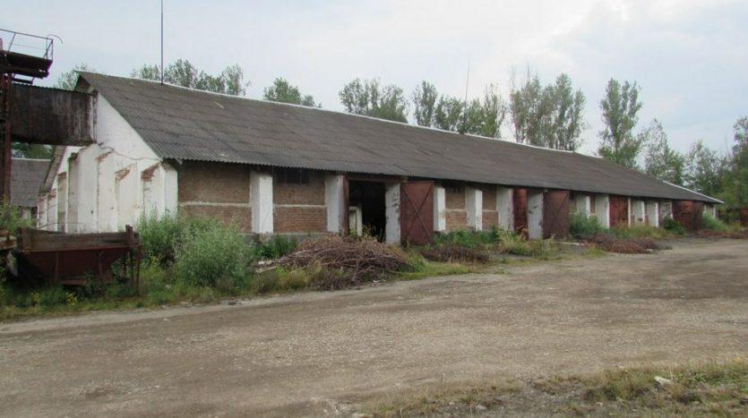 Rent - Dry warehouse, 1100 sq.m., Kalush