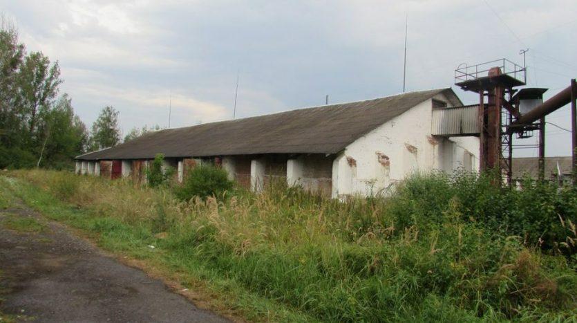 Rent - Dry warehouse, 1100 sq.m., Kalush - 2